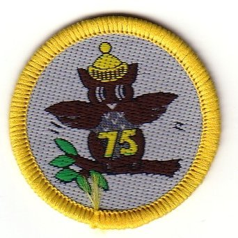 Brownie 75th Anniversary Badge, 1989